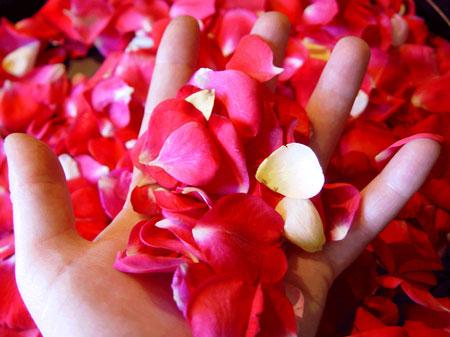 mani-e-fiori-sessualita-femminile
